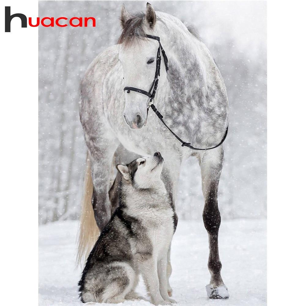 Huacan DIY diamante pintura caballo diamantes bordado perros diamante mosaico venta taladro completo Plaza animales de fotos