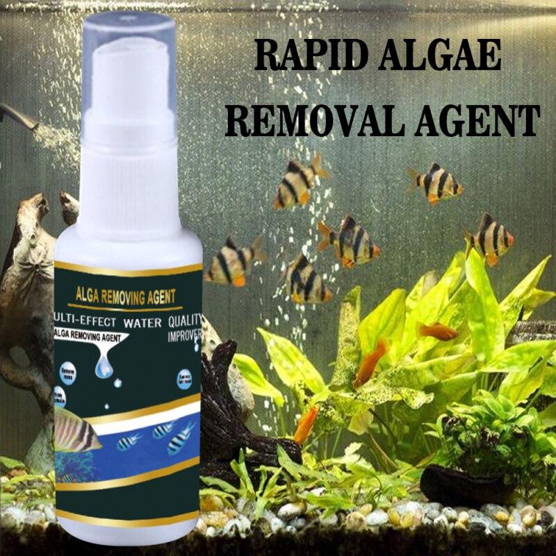 30 ml aquário algas aquáticas controle do tanque de peixes alta eficaz agente purificador seguro algas removedor casa ferramentas de limpeza aquática