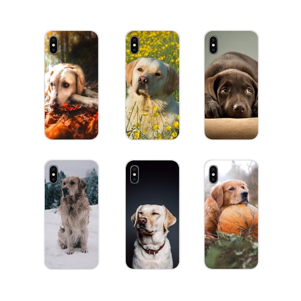 Para Samsung A10 A30 A40 A50 A60 A70 M30 Galaxy Note 2 3 4 5 8 9 10 PLUS Acessórios Phone Cases Covers Cão Labrador