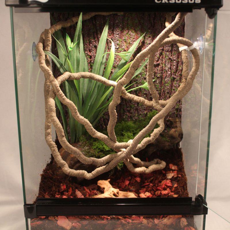 Tanque para reptiles paisajismo bosque tropical decoración Artcifial falso ratán camaleón lagartija vid trepadora bosque tropical decoración de tanque