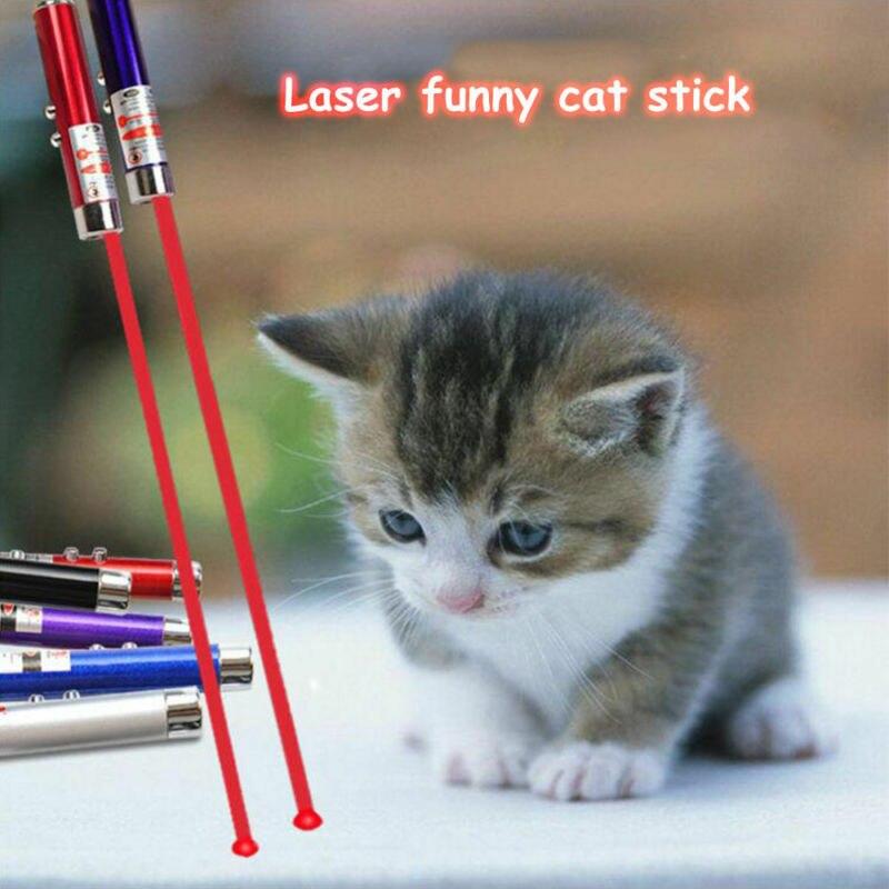 2-in-1 LED Laser Stift Pet Pointer Licht Schlüsselbund Schlüsselbund Lustige Katze Hund Spielzeug Tragbare Kunststoff Karte casual Interaktive Spiel TXTB1