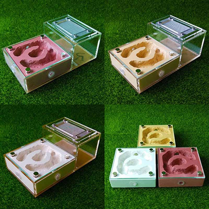 Modelo magnético de yeso plano biónico para mascotas, caja de Castillo, hormigas, casa de granja, terrario para reptiles, regalos únicos