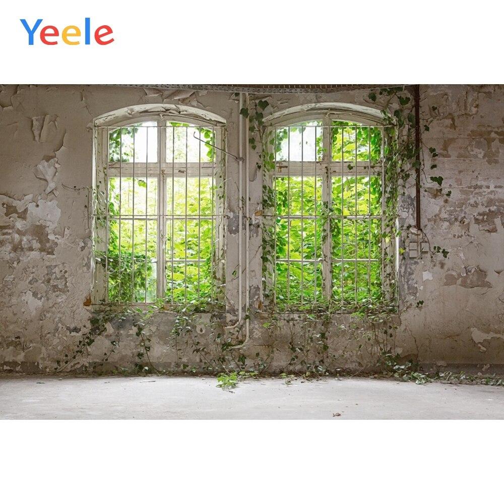 Fondos fotográficos personalizados Yeele desierto ventana de madera pared retrato de Vid verde foto escénica para estudio fotográfico
