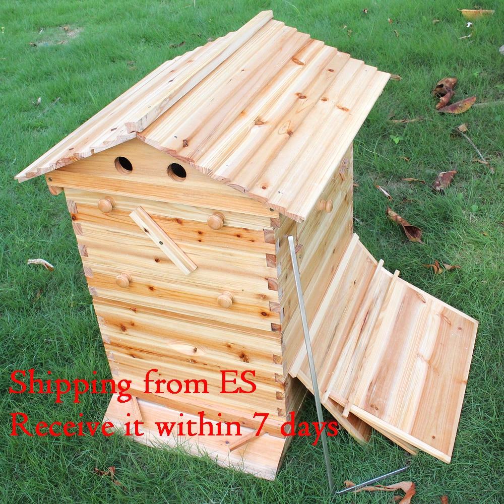 التلقائي صندوق نحل خشبي خشبي عش النحل معدات تربية النحل أداة لتوريد خلية النحل مستودع الألمانية تسليم