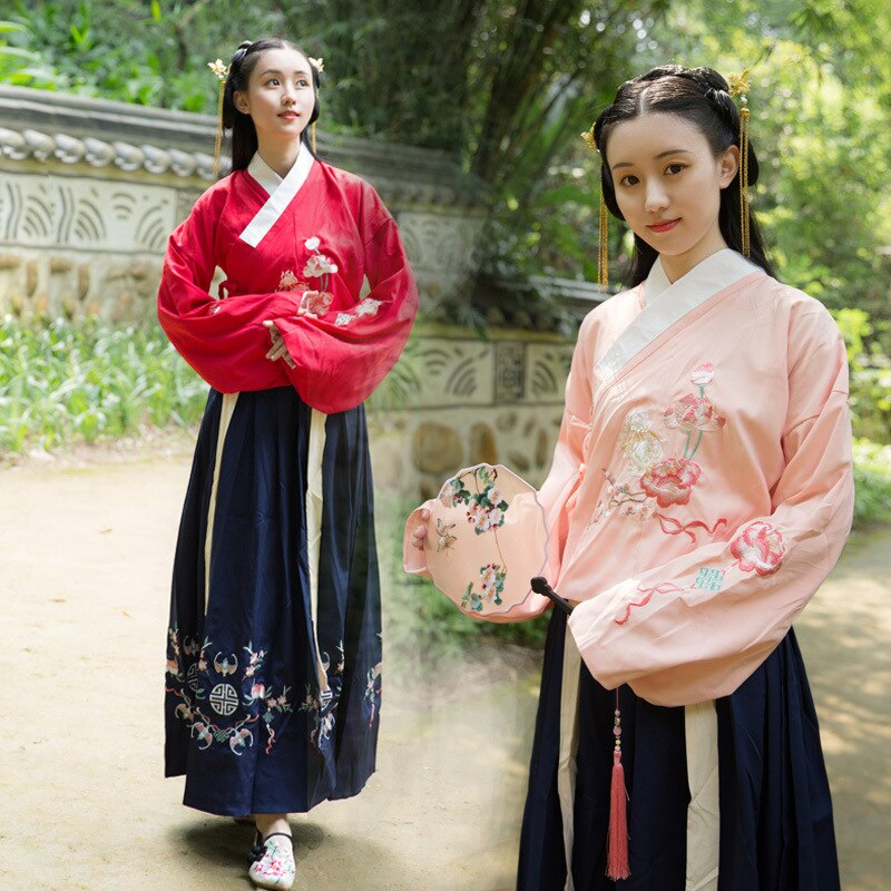 Vestido tradicional hanfu femenino Ming para mujer de invierno/Vestido de manga larga led Ru Falda bordada cintura h plait suit
