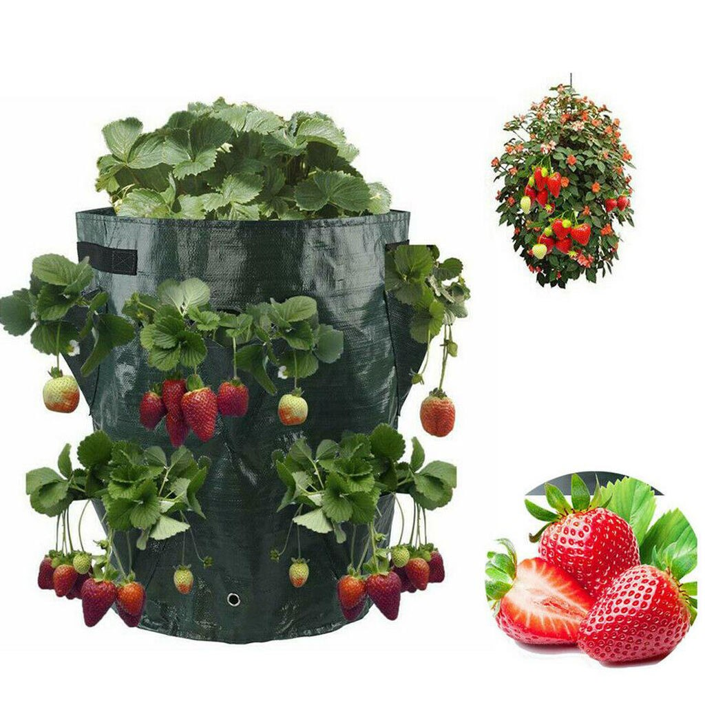 Strawberry Seedling Bag Multi-mouth Container Bag Planter Pouch Plant Growing Pot Home Garden Planti