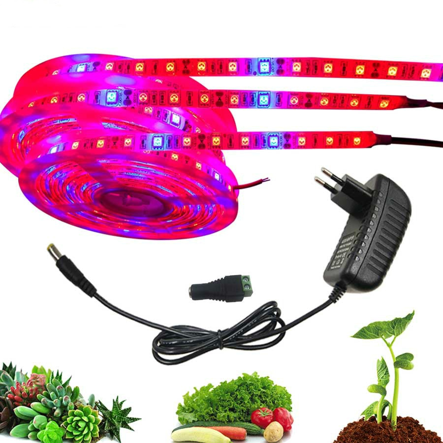 Plant Grow Lights 5 M Waterdichte Volledige Spectrum Led Strip Bloem Phyto Lamp Rood Blauw 41 Voor Kas Hydrocultuur + power Adapter