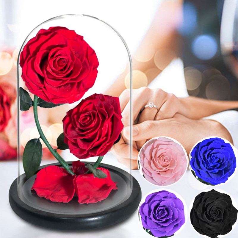 2 رؤساء زهرة أبدية في زجاج مقبب الجمال والوحش المحسن زهرة اصطناعية لها عيد الحب هدية الزفاف