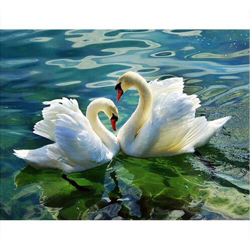 Cisnes dançando na água pintura feita à mão de alta qualidade lona bela pintura por números surpresa presente grande realização