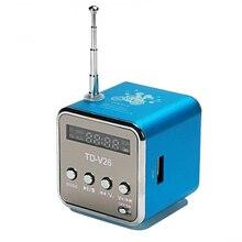 Haut-parleur portatif de bluetooth de TD-V26 avec la Radio FM numérique Mini récepteur de Radio FM avec le haut-parleur stéréo daffichage à cristaux liquides soutiennent la voiture Micro de TF