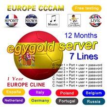 2020 egygold cccam cline Oscam Cline almanya avrupa Cccam clines 1 yıl İspanya v8 süper gtmedia v8 nova uydu TV alıcısı