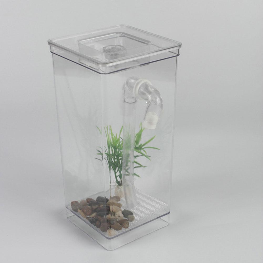 Mini kit de diversão para animais de estimação aquáticos aquário decoração para casa aquário tanque de peixes peixes auto-limpeza grama ecológica