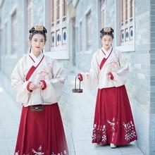 Costume dhiver épais ancien costume brodé col quotidien Han femmes Pipa manches Ming fait veste et jupe ensemble