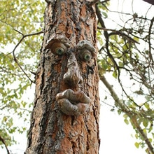 Monster Ornaments Bark Ghost Face Facial Features Tree Ghost Decoration Easter Outdoor Creative Prop