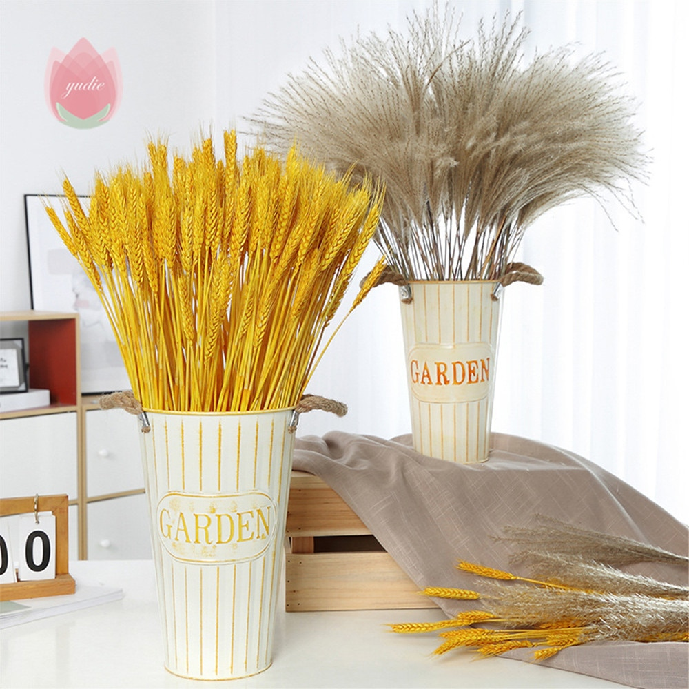 Bulrush Natural Dried Small Pampas Grass Phragmites Artificial Real Wheat Flower For Wedding Party DIY Craft Scrapbook Bouquet