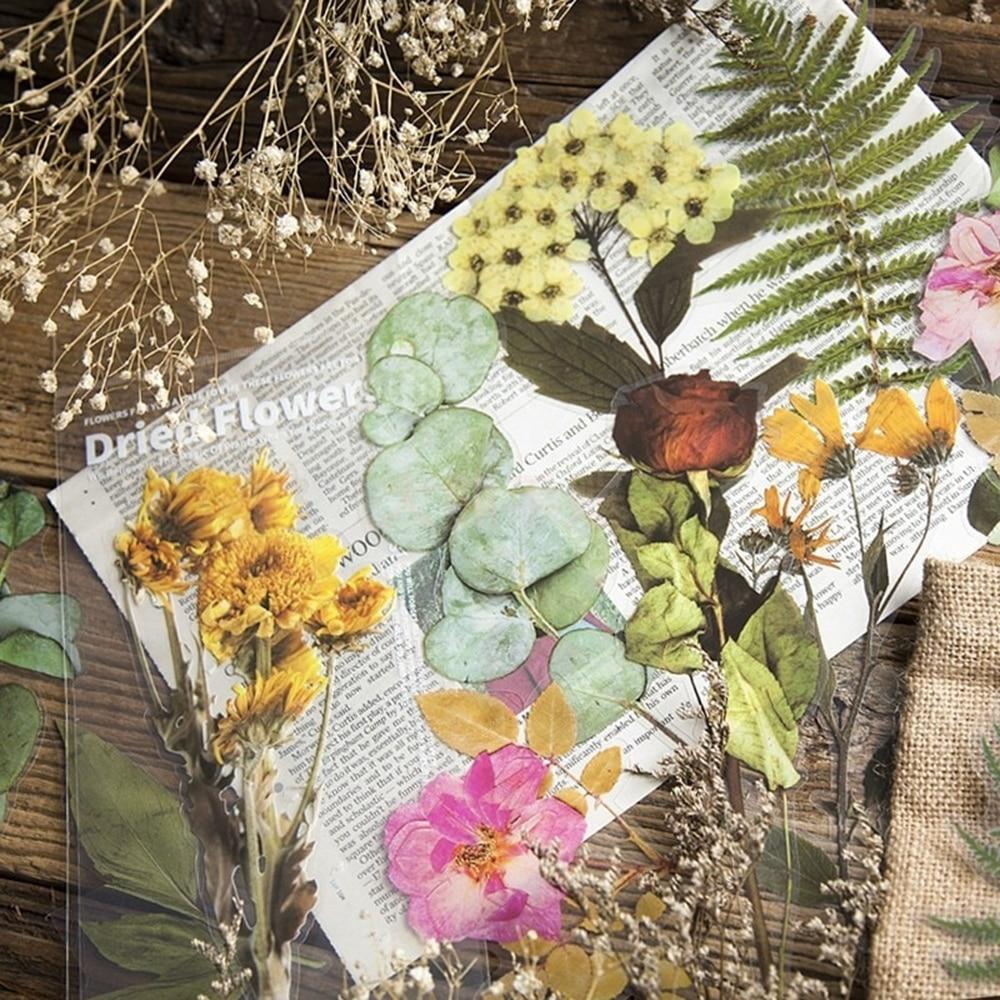 6 pcs lot vintage stick 6 Pcs/set  Plant Flower Series Decorative Stickers Scrapbooking Stick Label Diary Album Vintage Plant Sticker