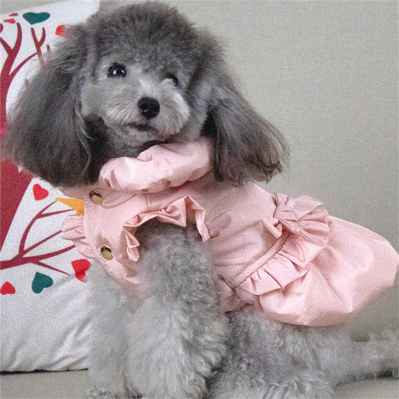 Winter Pet Dog Dress Coat Bowknot Cut Candy Dogs Clothes Warm Puppy Outfit Yorkshire Pomeranian Small Dog Clothing Pets Costume  - buy with discount