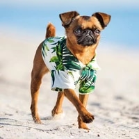 hawaii dogs shirts green bamboo suit pet colorful summer costume cool breathable chiffon short sleeve printed shirt hot sell