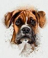 watercolor animal collection dog portrait animal art poster tin sign 8x12 inch home kitchen bedroom bar sign decoration posters