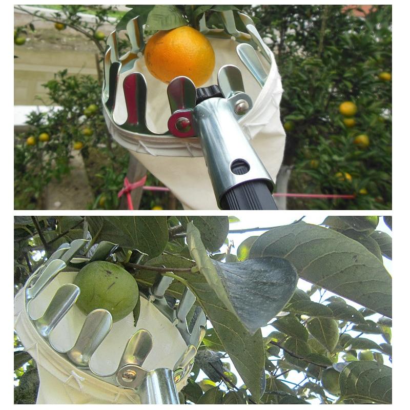 Vaisių rinkiklio krepšelio nešiojamasis vaisių gaudytuvas - Sodo įrankiai - Nuotrauka 6