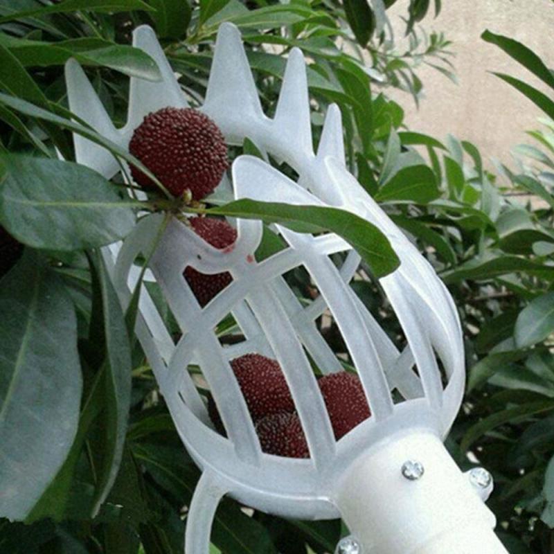 Herramientas de jardín, recogedor de frutas onvenient, herramienta de recolección de frutas para jardinería, herramienta de recolección de frutas, dispositivo de recolección de frutas, recolector de frutas para invernadero