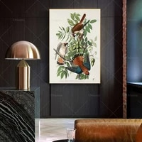 american sparrow hawk print john james audubon birds of america birds print vintage print gift idea wall art poster print