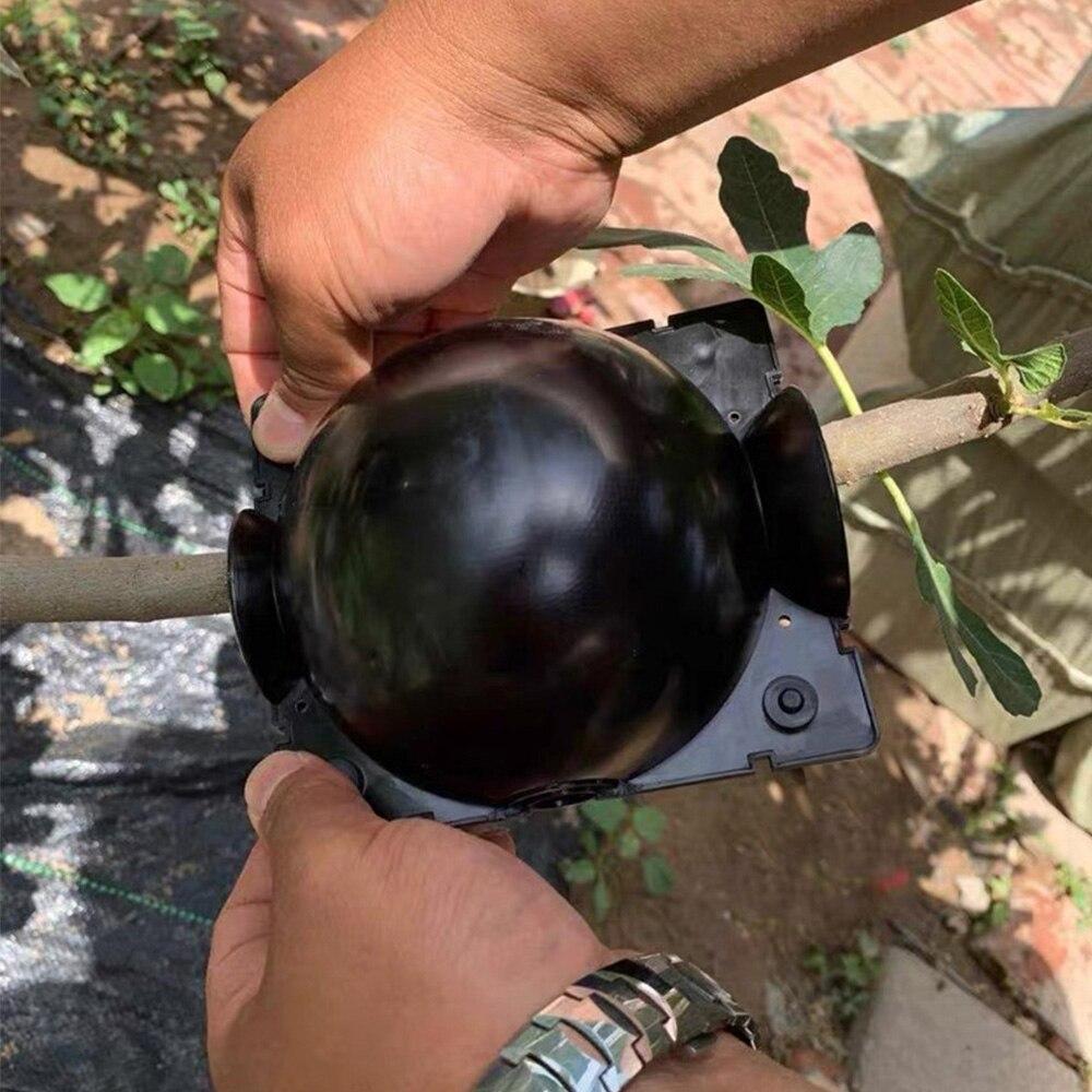 Bola de enraizamiento de plantas, Caja de cultivo de enraizamiento para injertos de plantas de jardín doméstico, caja de propagación de equipos de enraizado