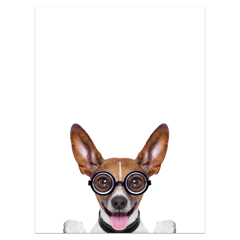 Nursery Kawaii Glasses Dogs Minimalist Art Canvas Posters and Prints Painting Animal Funny Picture Modern Home Room Decoration