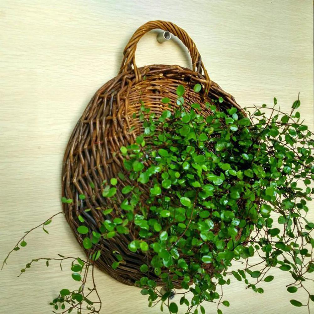 Wicker rattan flower basket hanging vine pot planter ჩამოკიდებული ვაზა კონტეინერი კედლის მცენარის კალათა ბაღისთვის