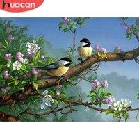 HUACAN 5D bricolage diamant peinture oiseau fleur pleine perceuse carre decoration de la maison broderie artisanat Art Kits