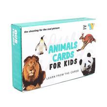 Tarjetas Flash de animales para bebé para niños inglés mandarín chino aprendizaje estudio Montessori educación Panda Tigre pingüino imagen