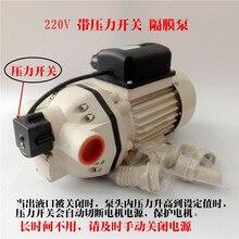 Pompe à urée 220V véhicule solution durée pompe de remplissage pompe auto-amorçante pompe à membrane électrique pompe chimique tonne pompe à baril