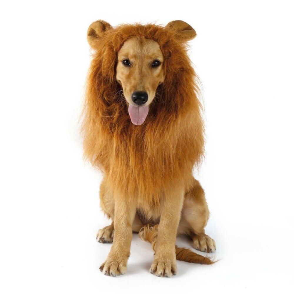 Нарядный нарядный костюм для домашних питомцев, одежда для кошек на Хэллоуин, парик с изображением Льва гривы и ушей