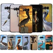 Animal Bird Brown Pelican Soft TPU Phone Case for Galaxy M10 M20 M30 S6 S7 Edge S8 S9 S10 S10e Plus Note 10 8 9