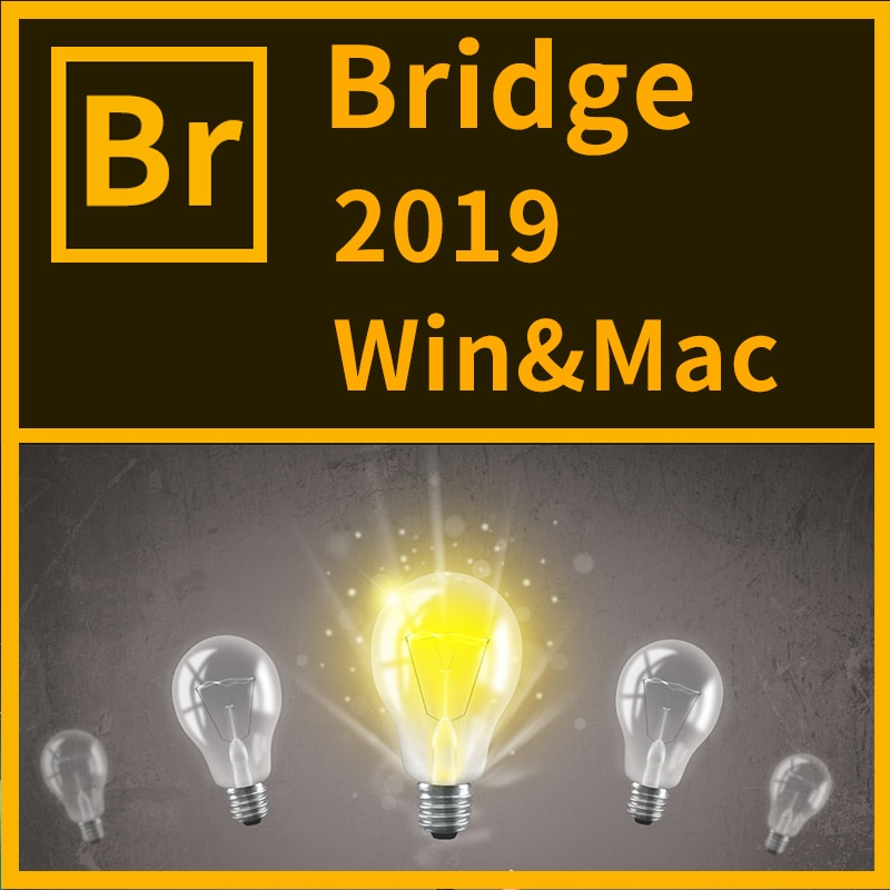 Software Bridge CC 2019 in Win or Mac Full Version Installation Package Used Free Forever and Quick Delivery