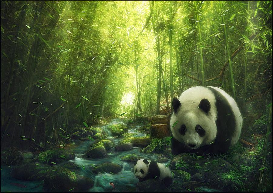 JMINE Div 5D Panda árbol bambú río completo diamante pintura punto de cruz kits de Arte de alta calidad Animal 3D pintura por diamantes
