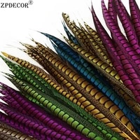 zpdecor 60 70cm 24 28 inch lady amherst pheasant feathers color can be customized