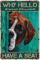 Citation drole de salle de bain en metal  signe en etain  decor mural Vintage pourquoi bonjour les joues douces ont un siege pour chien  signe en etain