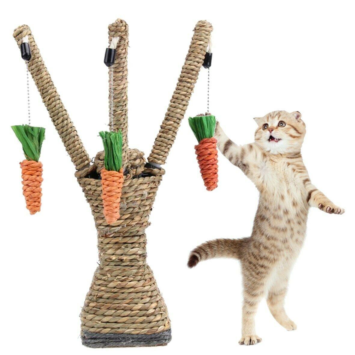 Gato árbol de escalada de juguetes para gatos interactivo paja Natural cuerda de Sisal rascado de gato pequeño puesto de juguete con zanahorias