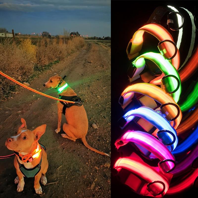 Usb Charging Led Dog Collar Safety Led Luminous Dog Pet Light Up Collar Night Nylon Necklace Glowing Leads for Dogs Night Safety