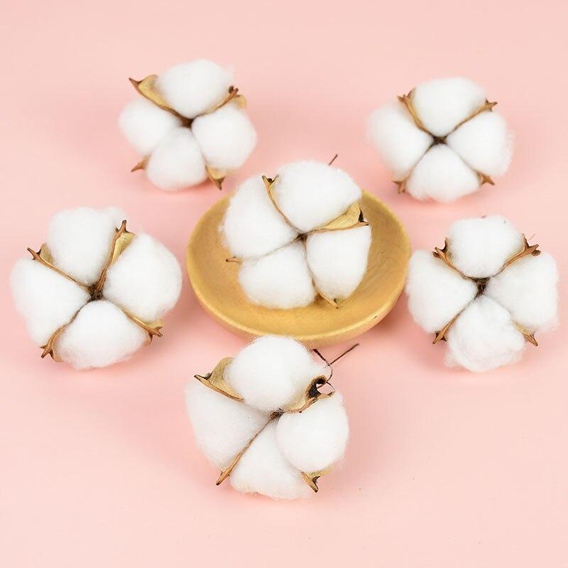 10 pçs flor de algodão seco natural branco artificial cabeças de flores casamento decorativo festival casa diy grinalda scrapbooking artesanato 7