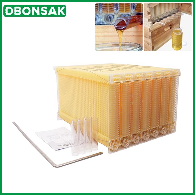 Cadre de nid de collecte automatique du miel pour apiculteur, ruche en plastique de qualité alimentaire, bloc de nid d'abeille, boîte de rate d'abeille, outils apiculteurs