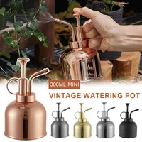 mini vintage watering pot copper watering can flower watering spray bottle for outdoor and indoor house plants