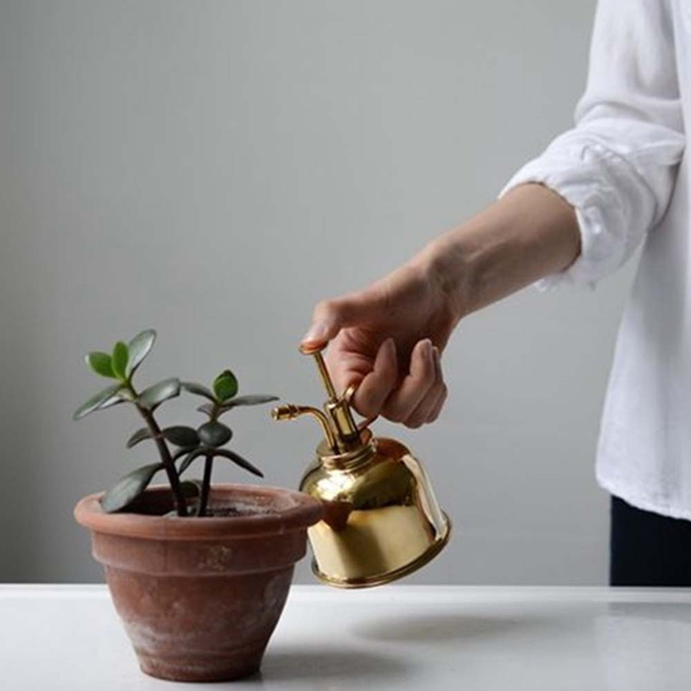 Watering Fles Nordic Engels-Stijl Vintage Messing Succulenten Kleine Gouden Tuinieren Spuiten Kan Water Pot Garden Supplies