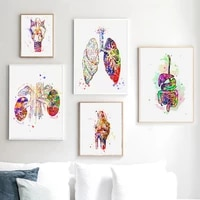 brain heart liver lung colourful anatomy hospital wall art canvas painting posters and prints wall pictures doctor office decor