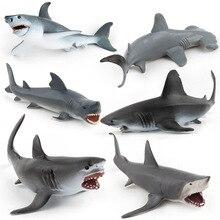6 types mer vie requin Animal Figure modèle à collectionner jouets figurines daction enfants marteau requin cadeau