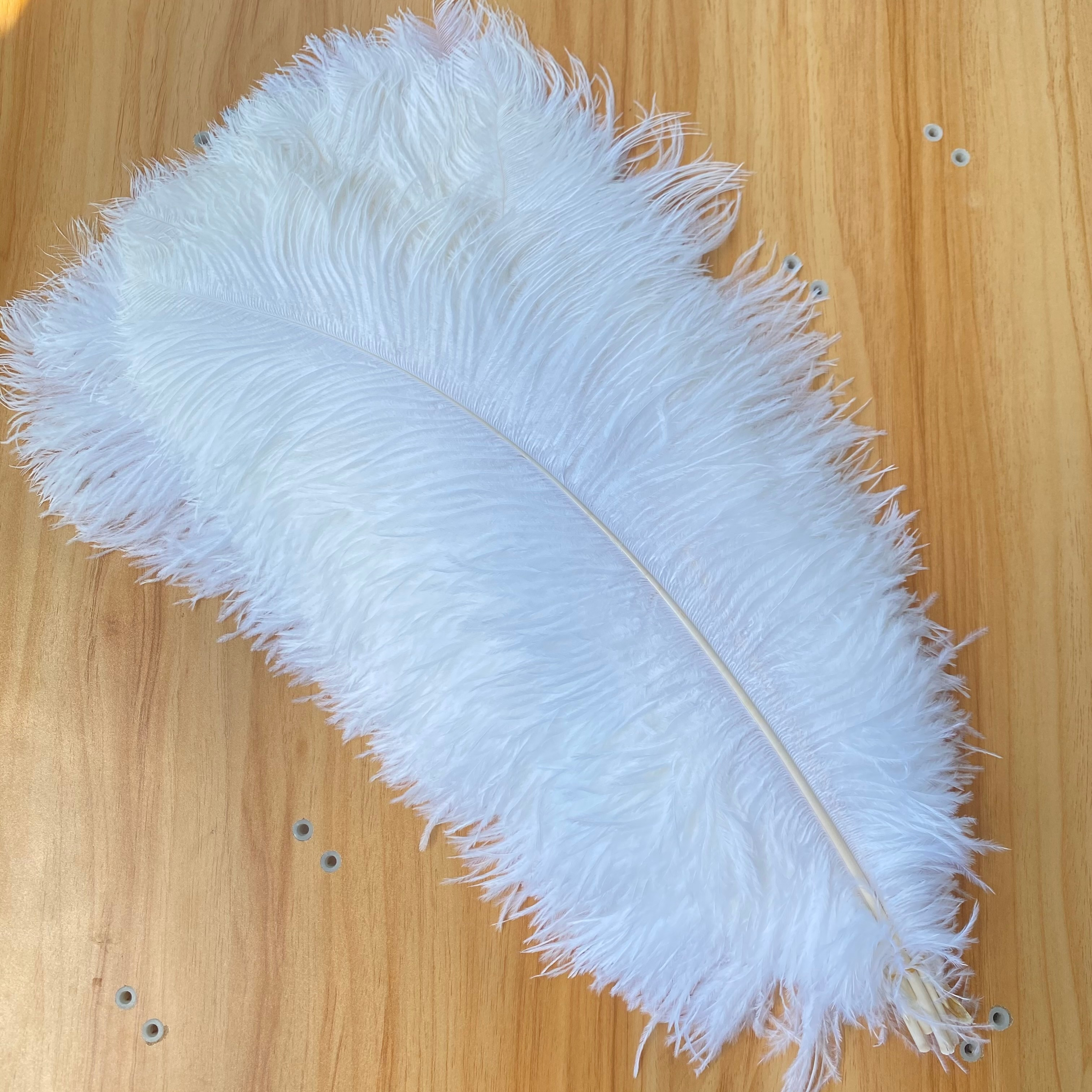 wholesale-20pcs-lot-beautiful-white-ostrich-feather-50-55cm-20-22inch-wedding-home-carnival-party-accessories-plumes-plume