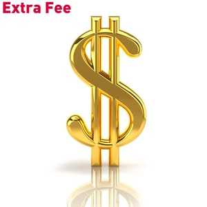 Add Money Here for Extra Shipping or Other Extra Costs or Additional Pay on Your Order