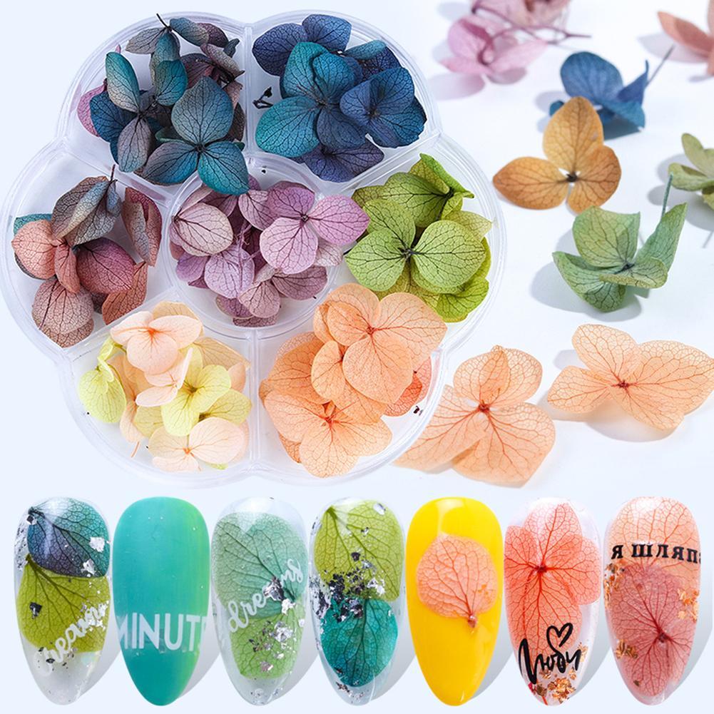 1 caja 3D flor seca decoración de uñas pegatina Floral Natural flor seca mixta DIY uñas arte calcomanías joyería UV Gel esmalte manicura