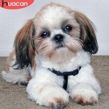 HUACAN 5D Diamond Painting Dog Full Square Diamond Art Embroidery Animal Handmade Mosaic Home Decoration